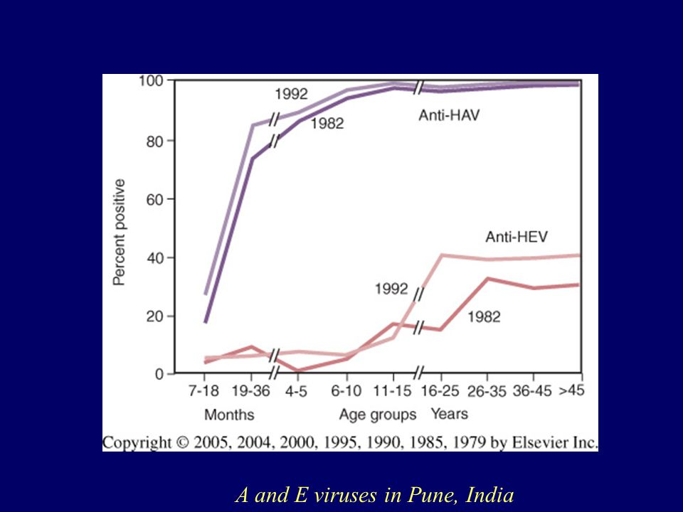 A and E viruses in Pune, India