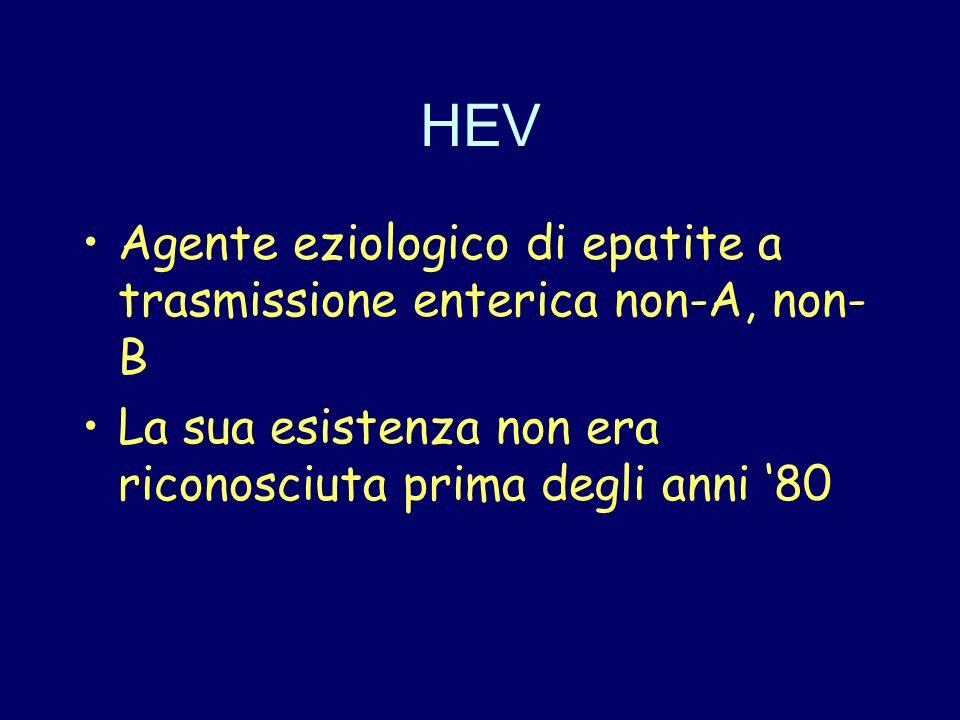 HEV Agente eziologico di epatite a trasmissione enterica non-A, non-B