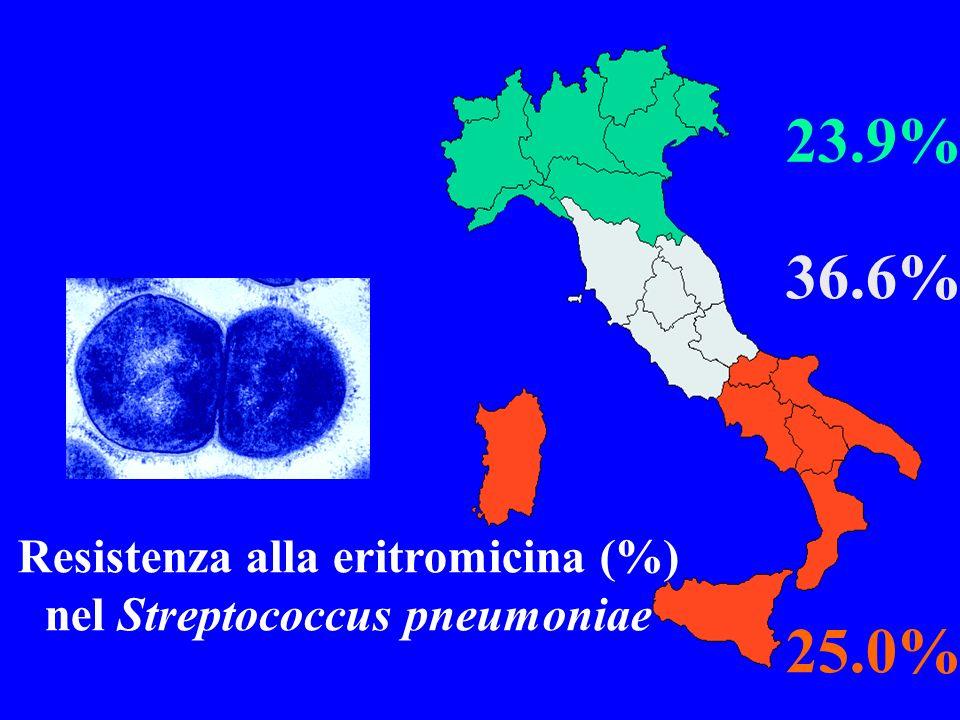 Resistenza alla eritromicina (%) nel Streptococcus pneumoniae