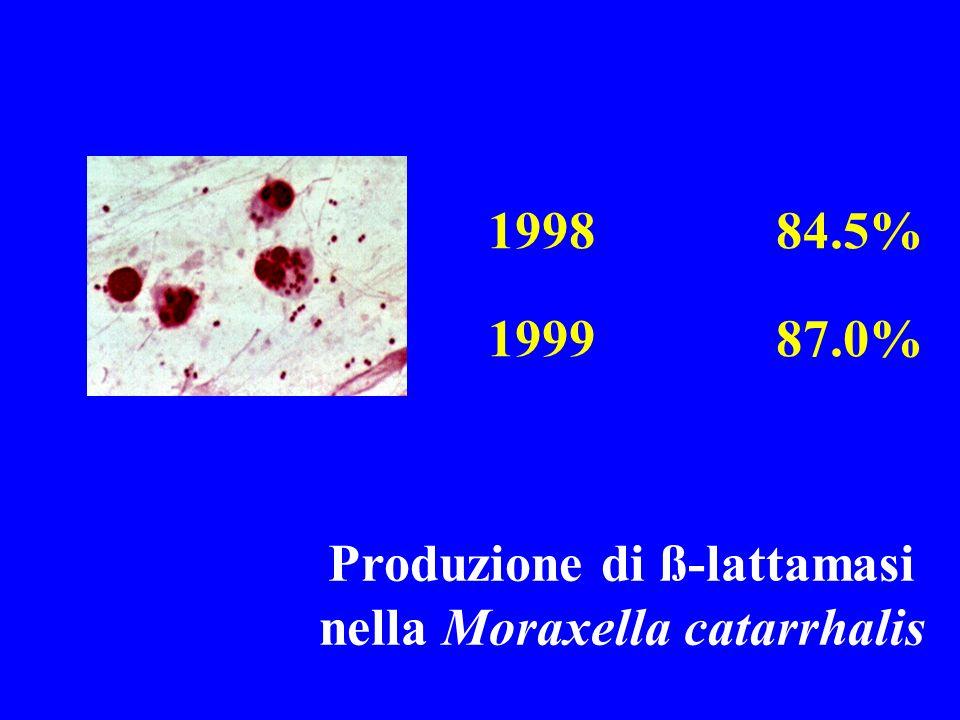 Produzione di ß-lattamasi nella Moraxella catarrhalis