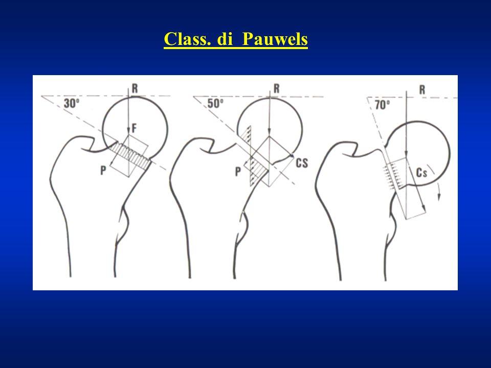 Class. di Pauwels