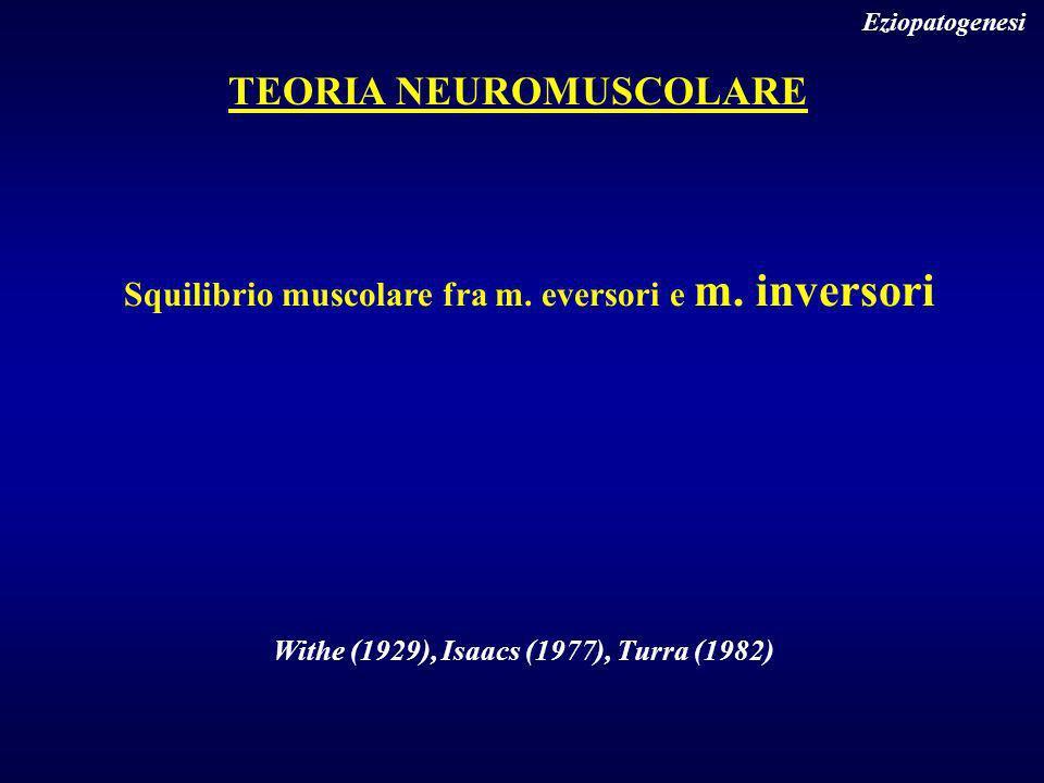 TEORIA NEUROMUSCOLARE