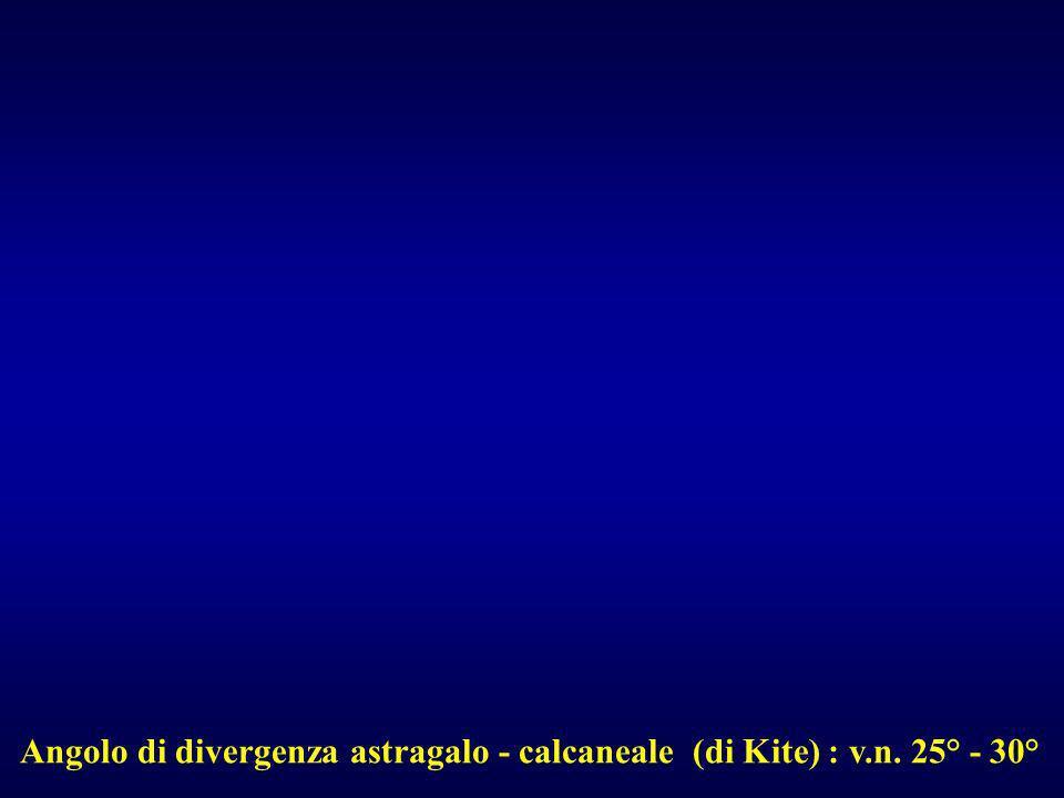 Angolo di divergenza astragalo - calcaneale (di Kite) : v.n. 25° - 30°