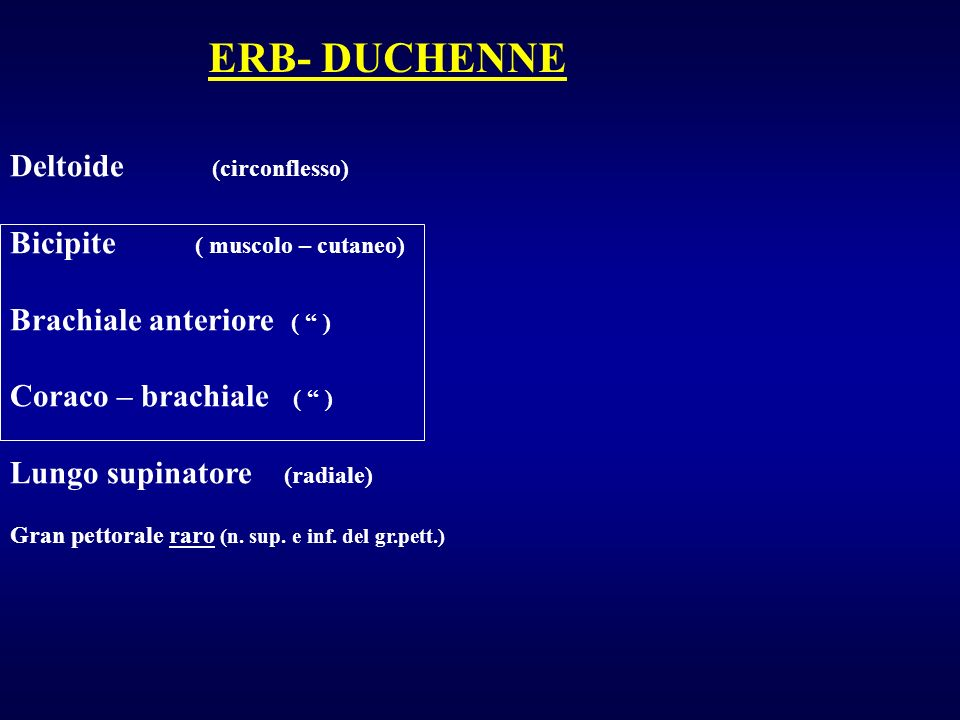 ERB- DUCHENNE Deltoide (circonflesso) Bicipite ( muscolo – cutaneo)