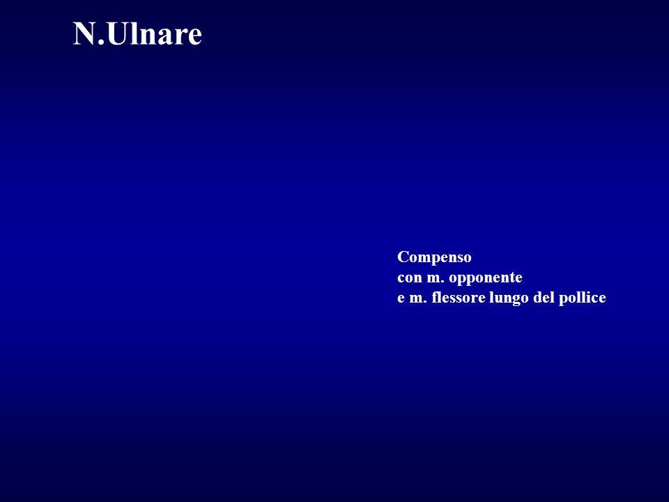 N.Ulnare Compenso con m. opponente e m. flessore lungo del pollice