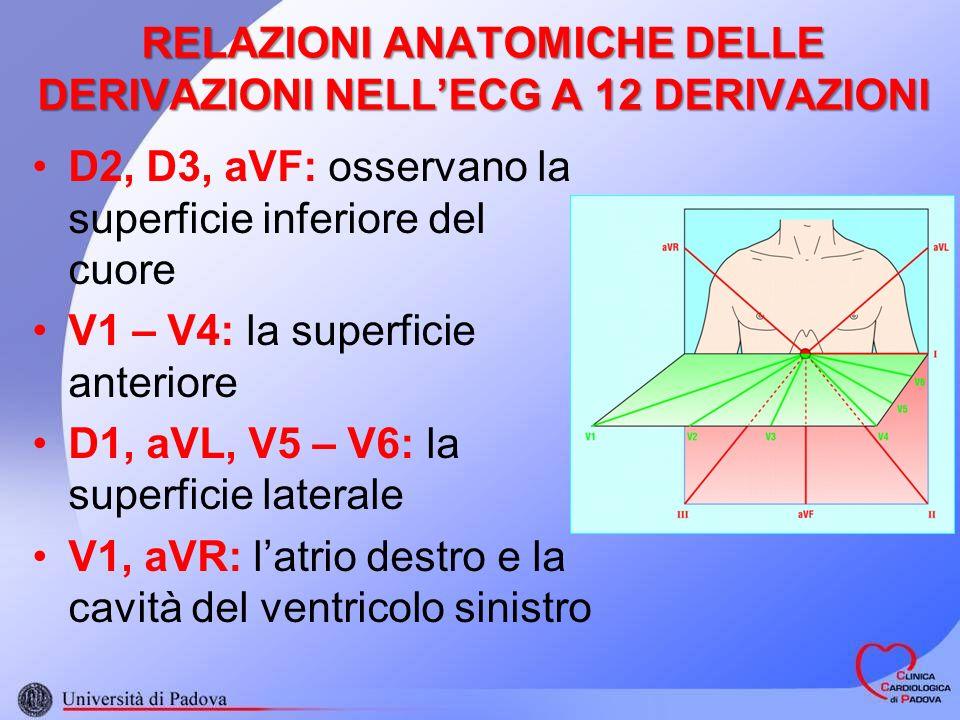 RELAZIONI ANATOMICHE DELLE DERIVAZIONI NELL'ECG A 12 DERIVAZIONI