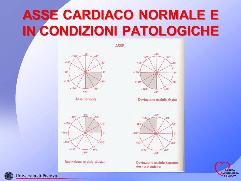 ASSE CARDIACO NORMALE E IN CONDIZIONI PATOLOGICHE