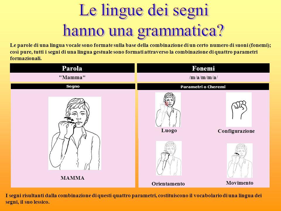 Le lingue dei segni hanno una grammatica Parola Fonemi