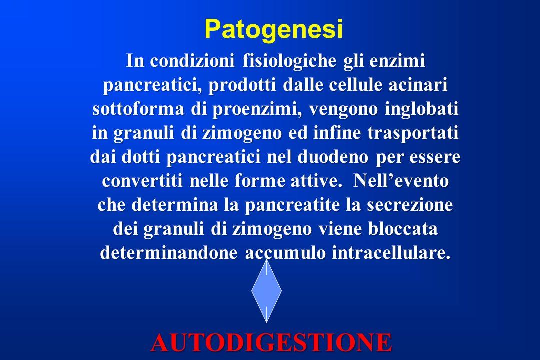 Patogenesi AUTODIGESTIONE