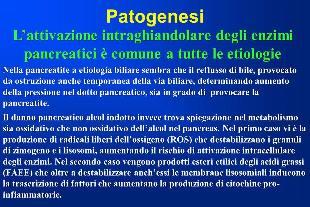 Patogenesi L'attivazione intraghiandolare degli enzimi pancreatici è comune a tutte le etiologie.