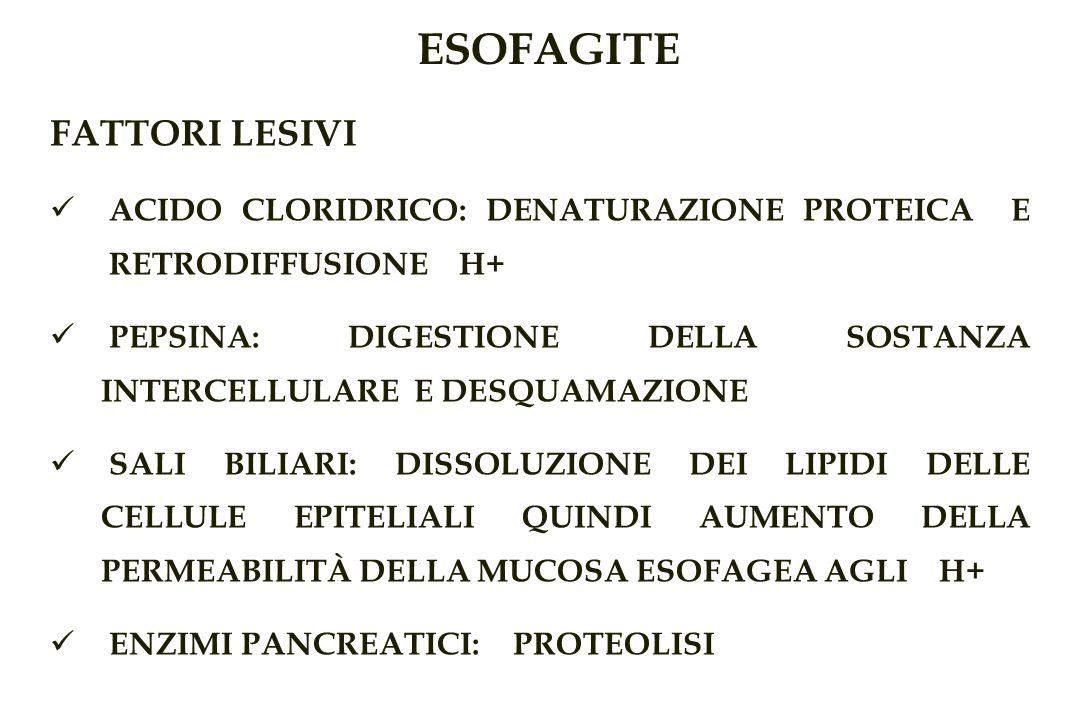 ESOFAGITE FATTORI LESIVI