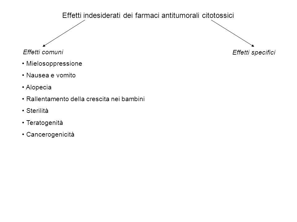 Effetti indesiderati dei farmaci antitumorali citotossici