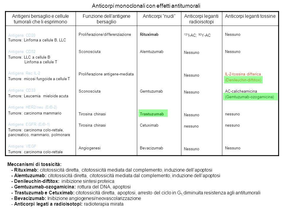 Anticorpi monoclonali con effetti antitumorali