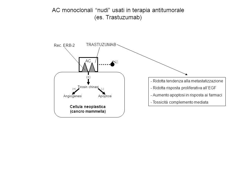 Cellula neoplastica (cancro mammella)