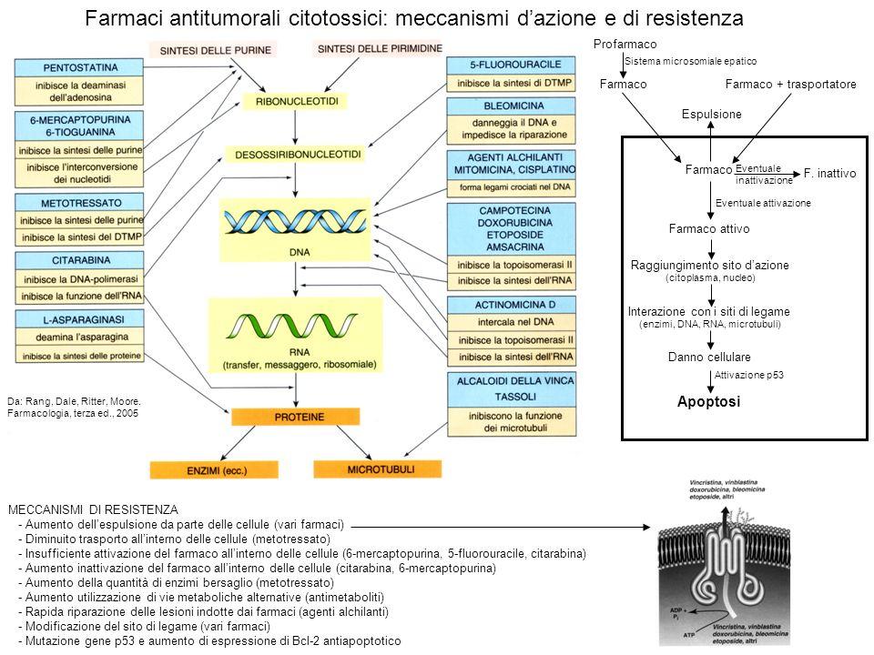 Farmaci antitumorali citotossici: meccanismi d'azione e di resistenza