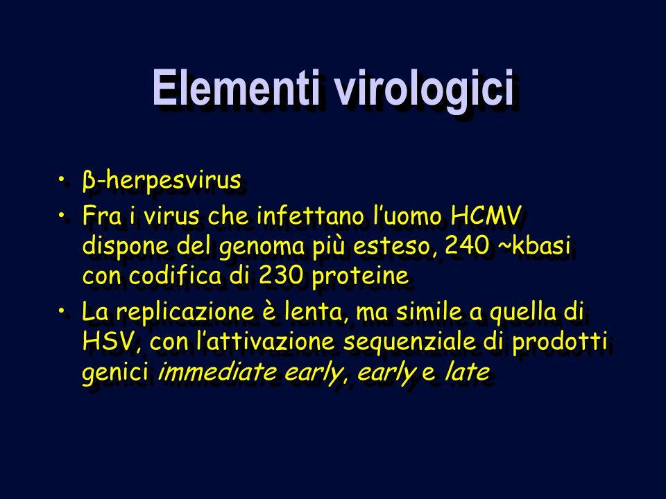 Elementi virologici β-herpesvirus