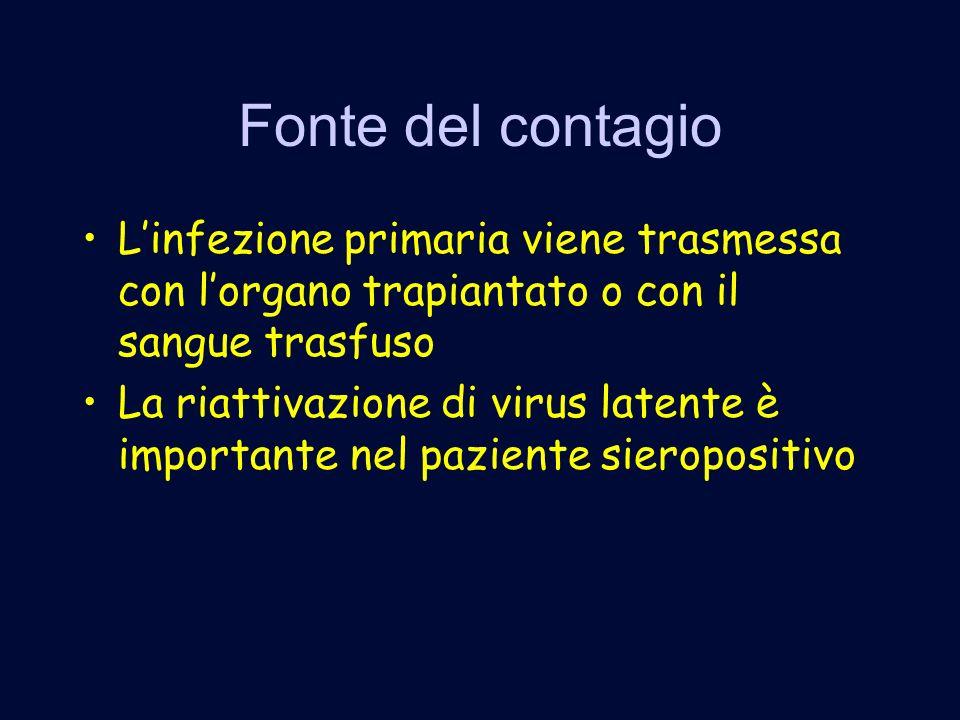Fonte del contagio L'infezione primaria viene trasmessa con l'organo trapiantato o con il sangue trasfuso.