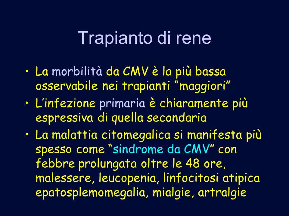 Trapianto di rene La morbilità da CMV è la più bassa osservabile nei trapianti maggiori