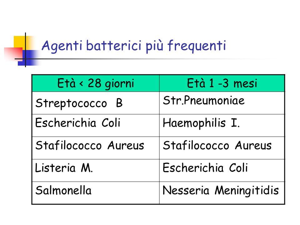 Agenti batterici più frequenti