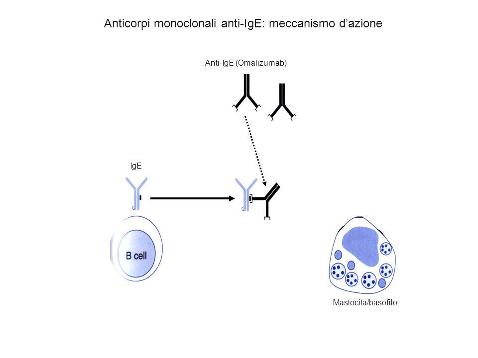Anticorpi monoclonali anti-IgE: meccanismo d'azione