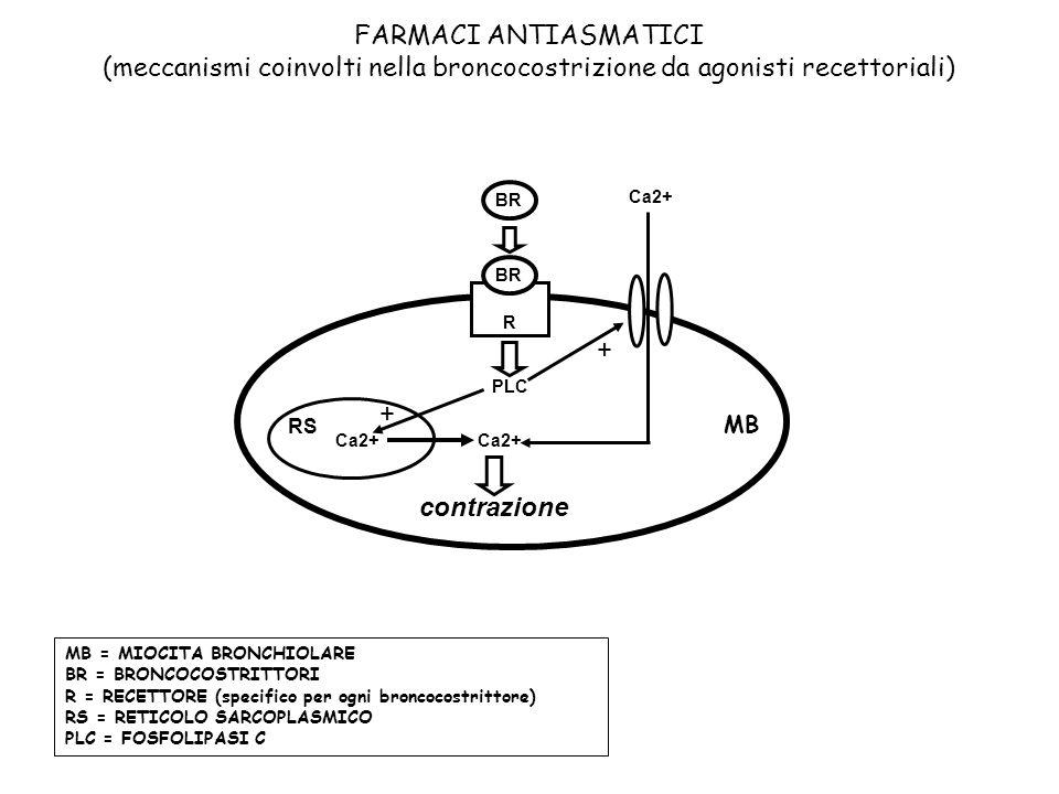 FARMACI ANTIASMATICI (meccanismi coinvolti nella broncocostrizione da agonisti recettoriali)
