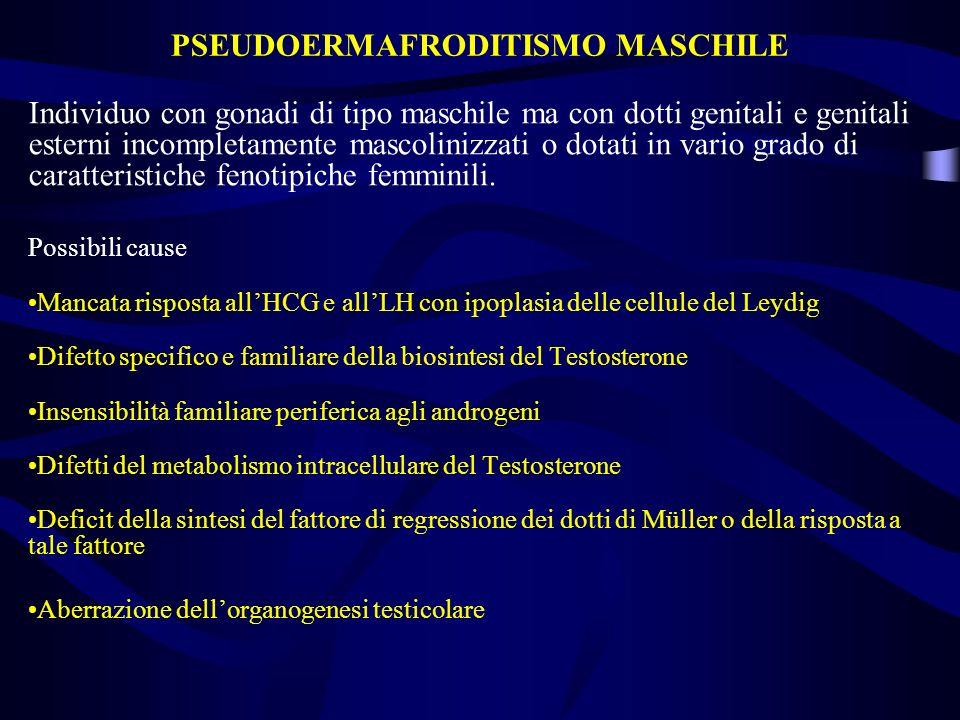 PSEUDOERMAFRODITISMO MASCHILE