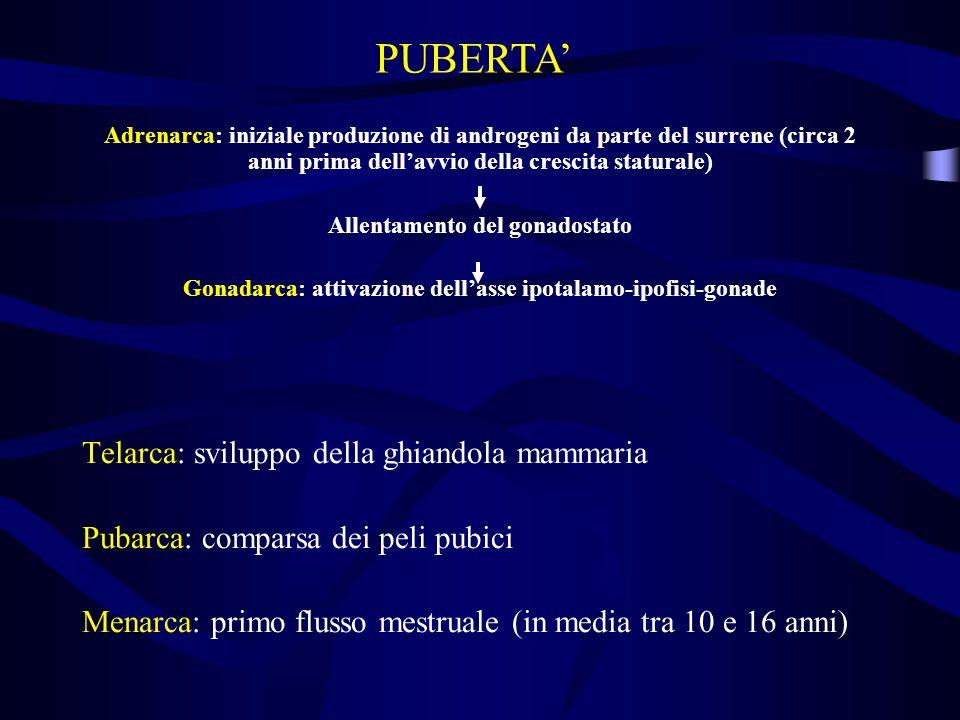 PUBERTA' Telarca: sviluppo della ghiandola mammaria