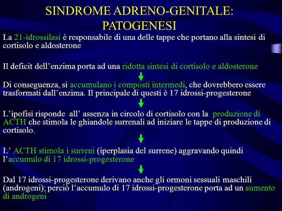 SINDROME ADRENO-GENITALE: