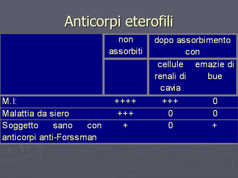 Anticorpi eterofili