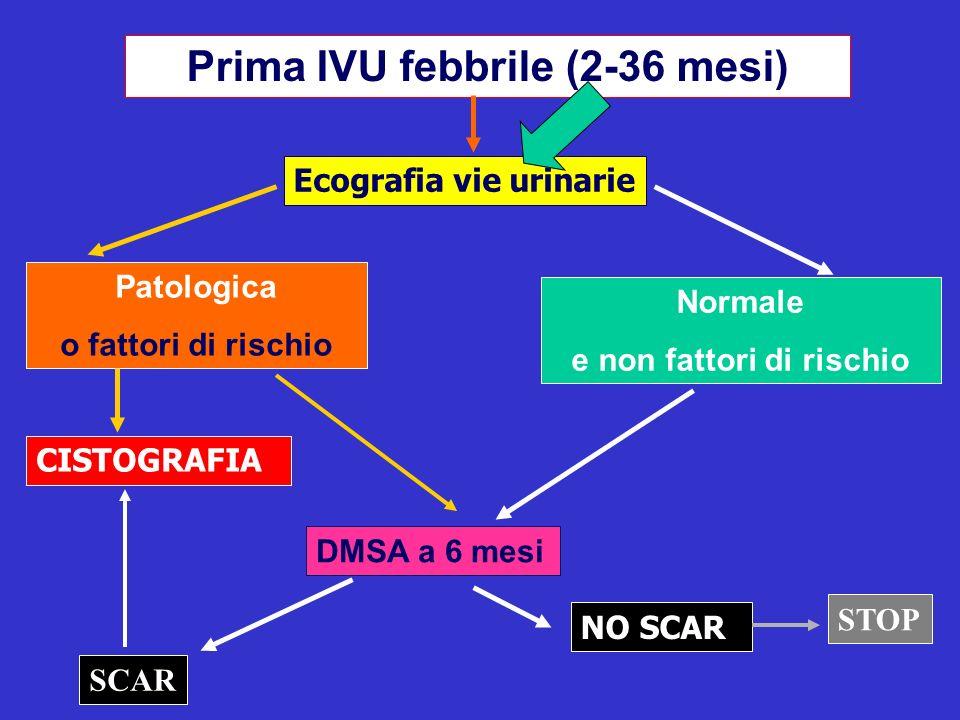 Prima IVU febbrile (2-36 mesi) e non fattori di rischio