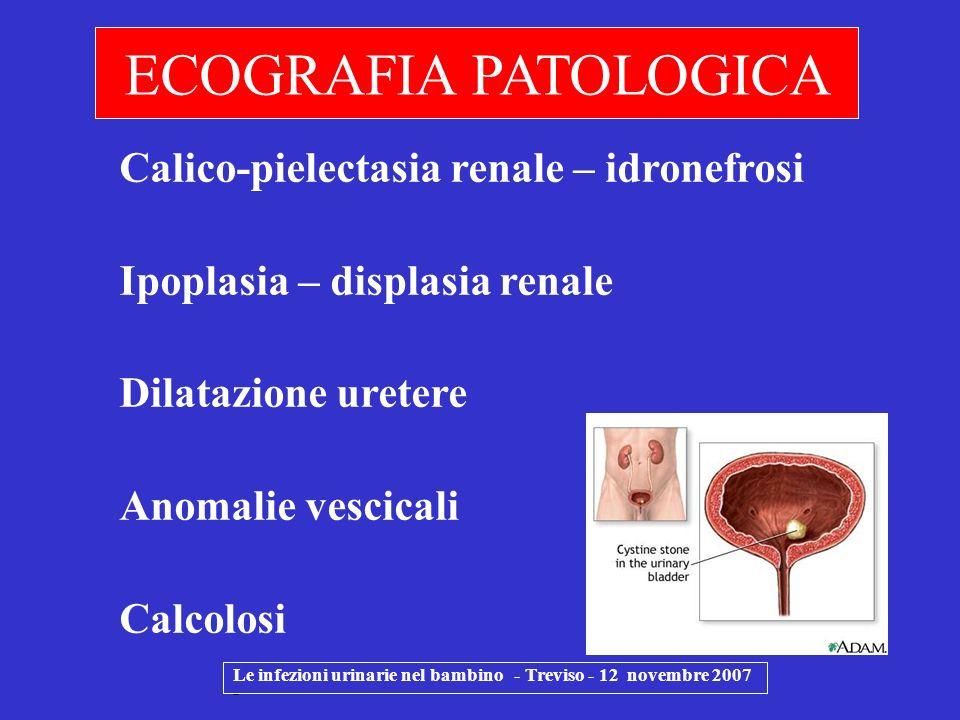 ECOGRAFIA PATOLOGICA Calico-pielectasia renale – idronefrosi