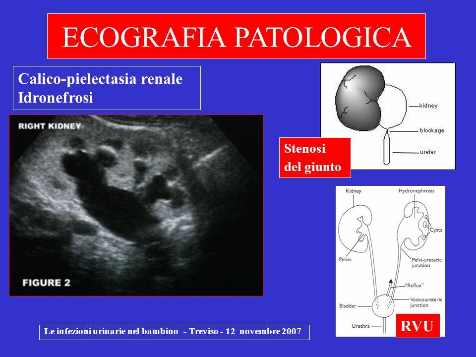 ECOGRAFIA PATOLOGICA Calico-pielectasia renale Idronefrosi RVU Stenosi