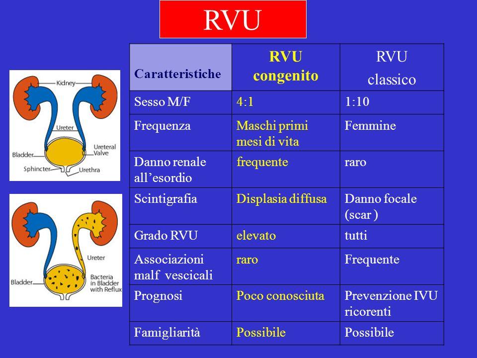 RVU RVU congenito RVU classico Caratteristiche Sesso M/F 4:1 1:10