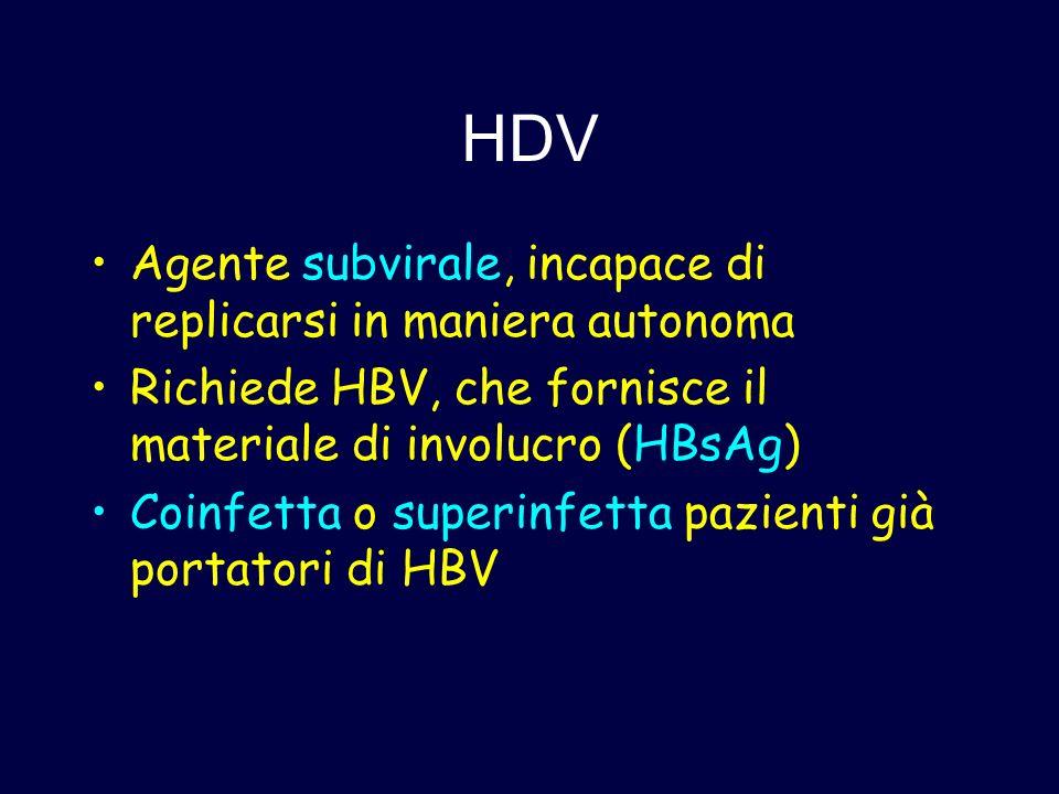 HDV Agente subvirale, incapace di replicarsi in maniera autonoma