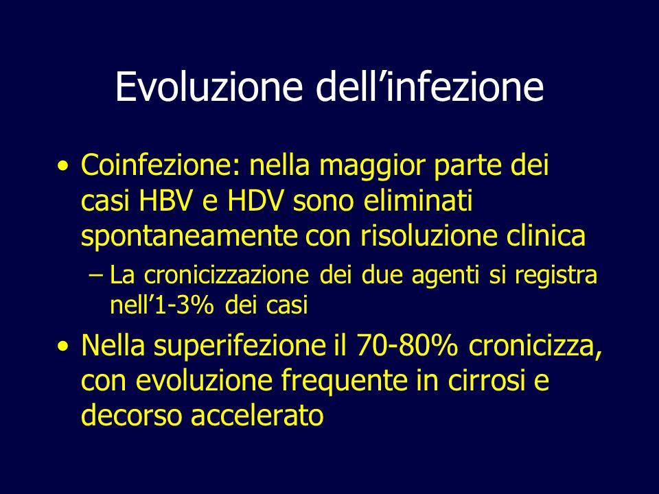 Evoluzione dell'infezione