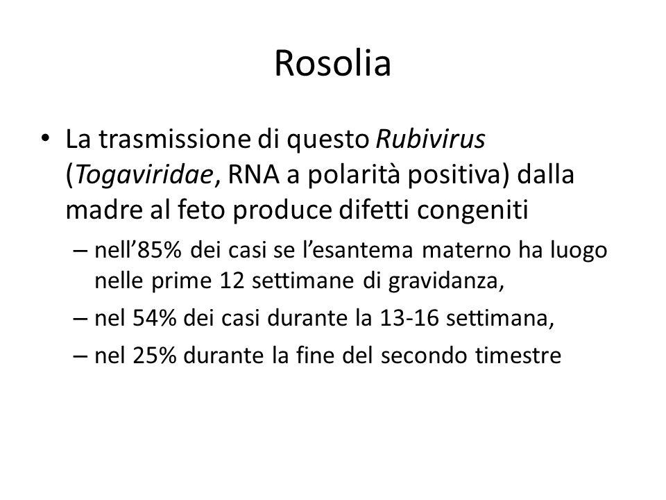Rosolia La trasmissione di questo Rubivirus (Togaviridae, RNA a polarità positiva) dalla madre al feto produce difetti congeniti.