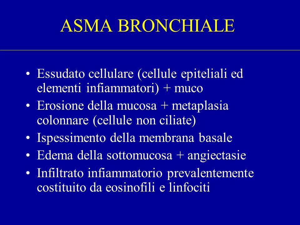 ASMA BRONCHIALE Essudato cellulare (cellule epiteliali ed elementi infiammatori) + muco.