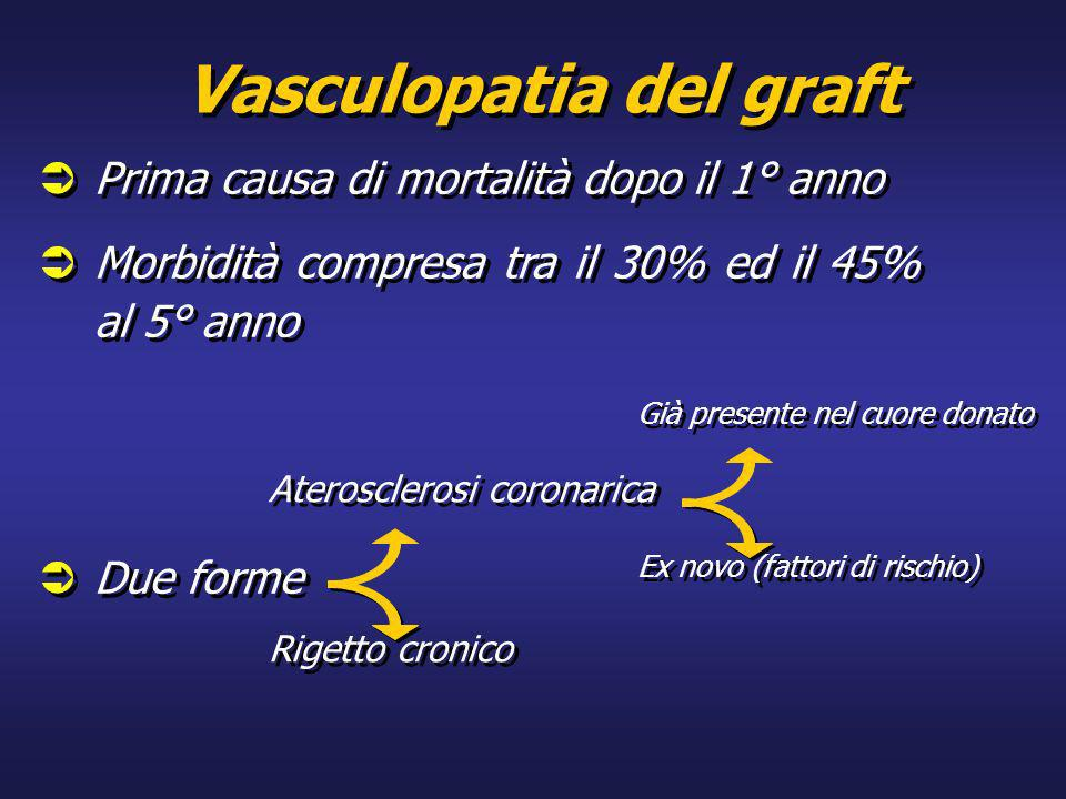 Vasculopatia del graft