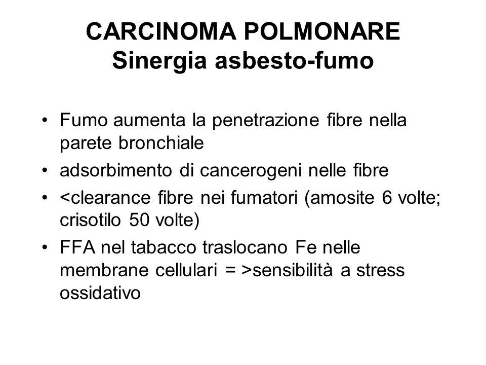 CARCINOMA POLMONARE Sinergia asbesto-fumo