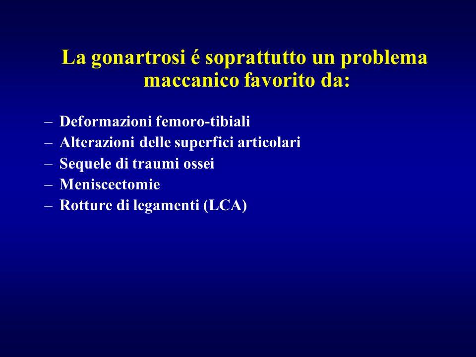 La gonartrosi é soprattutto un problema maccanico favorito da: