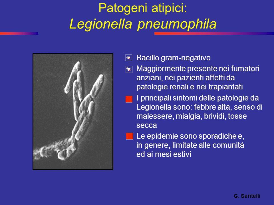 Patogeni atipici: Legionella pneumophila
