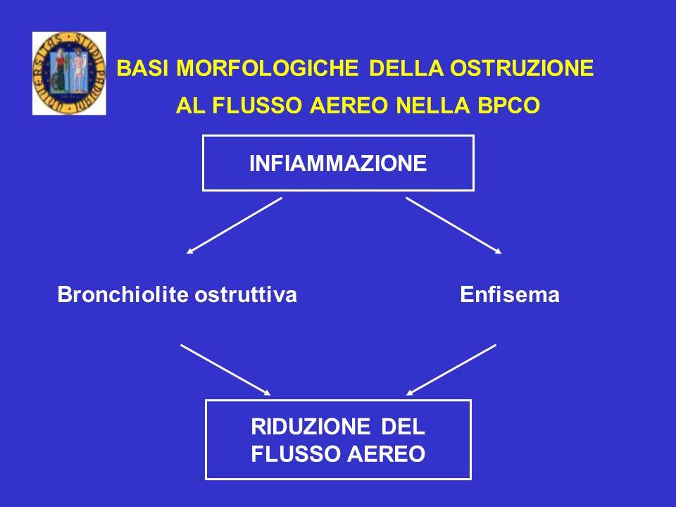 BASI MORFOLOGICHE DELLA OSTRUZIONE AL FLUSSO AEREO NELLA BPCO