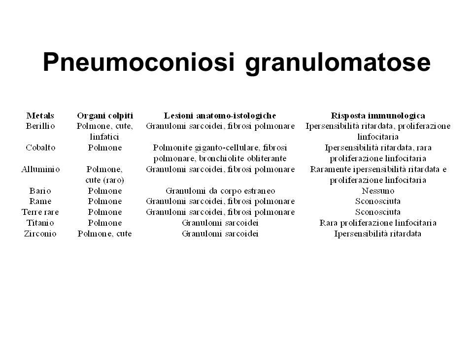 Pneumoconiosi granulomatose