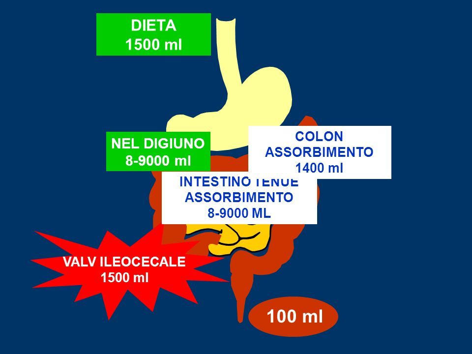 100 ml DIETA 1500 ml NEL DIGIUNO 8-9000 ml COLON ASSORBIMENTO 1400 ml