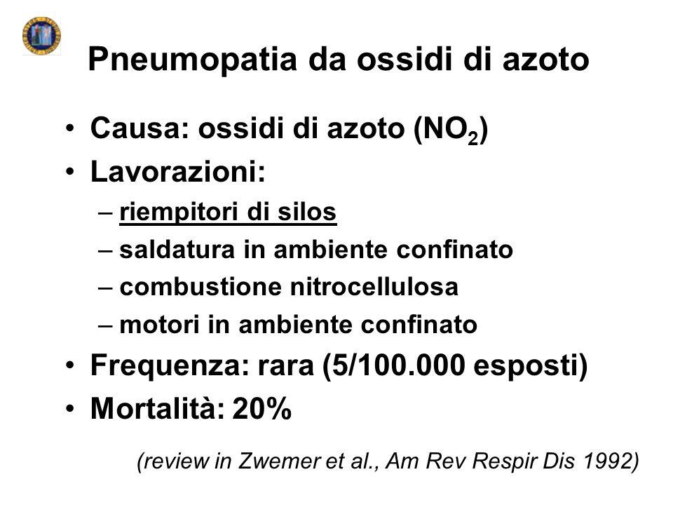 Pneumopatia da ossidi di azoto