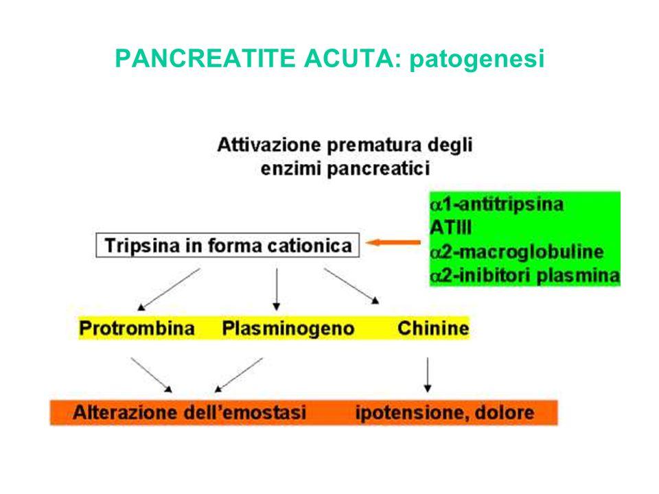 PANCREATITE ACUTA: patogenesi