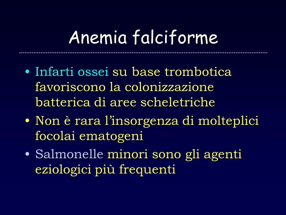 Anemia falciforme Infarti ossei su base trombotica favoriscono la colonizzazione batterica di aree scheletriche.