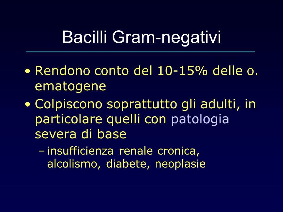 Bacilli Gram-negativi