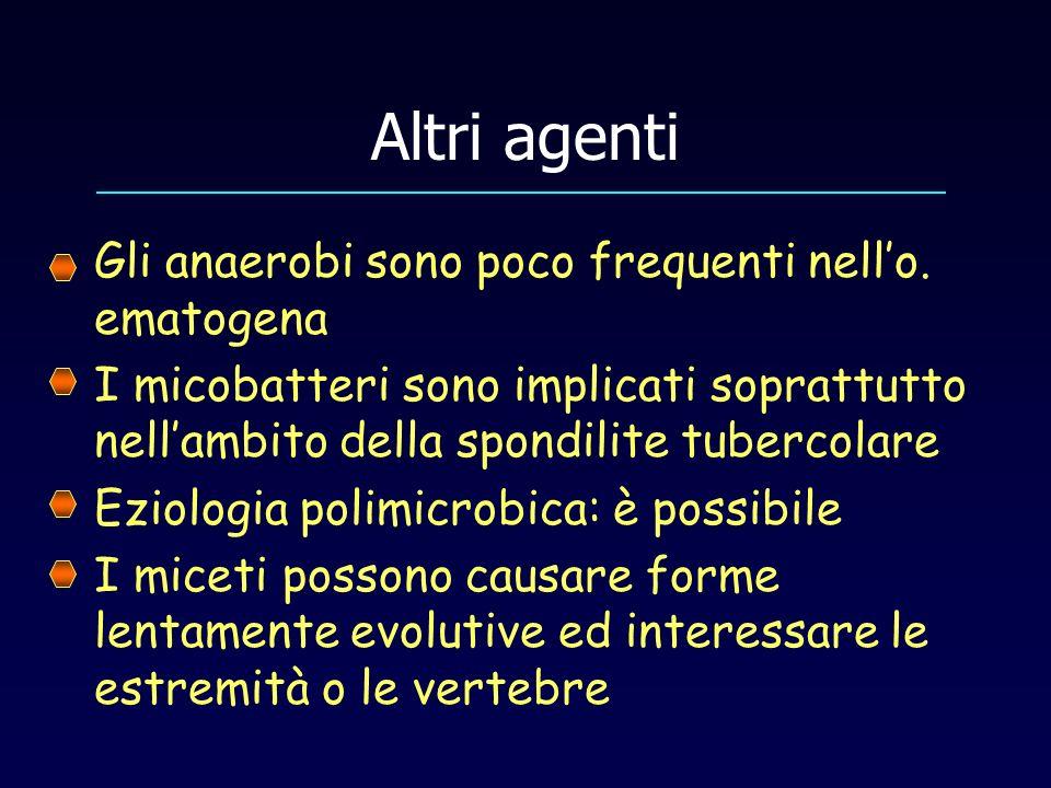 Altri agenti Gli anaerobi sono poco frequenti nell'o. ematogena