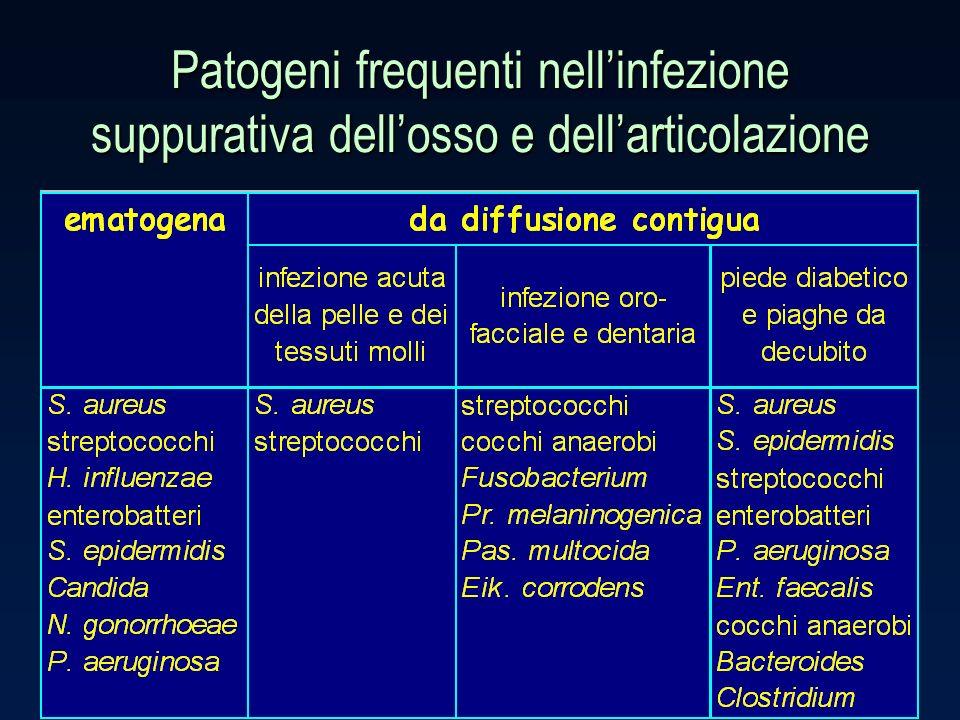 Patogeni frequenti nell'infezione suppurativa dell'osso e dell'articolazione